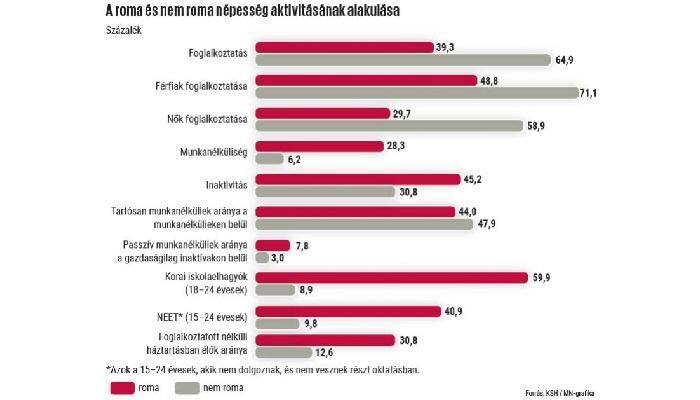 ciganyok-cigany-magyar-nemzet-ksh-statisztika-oktatas-munkaeropiac